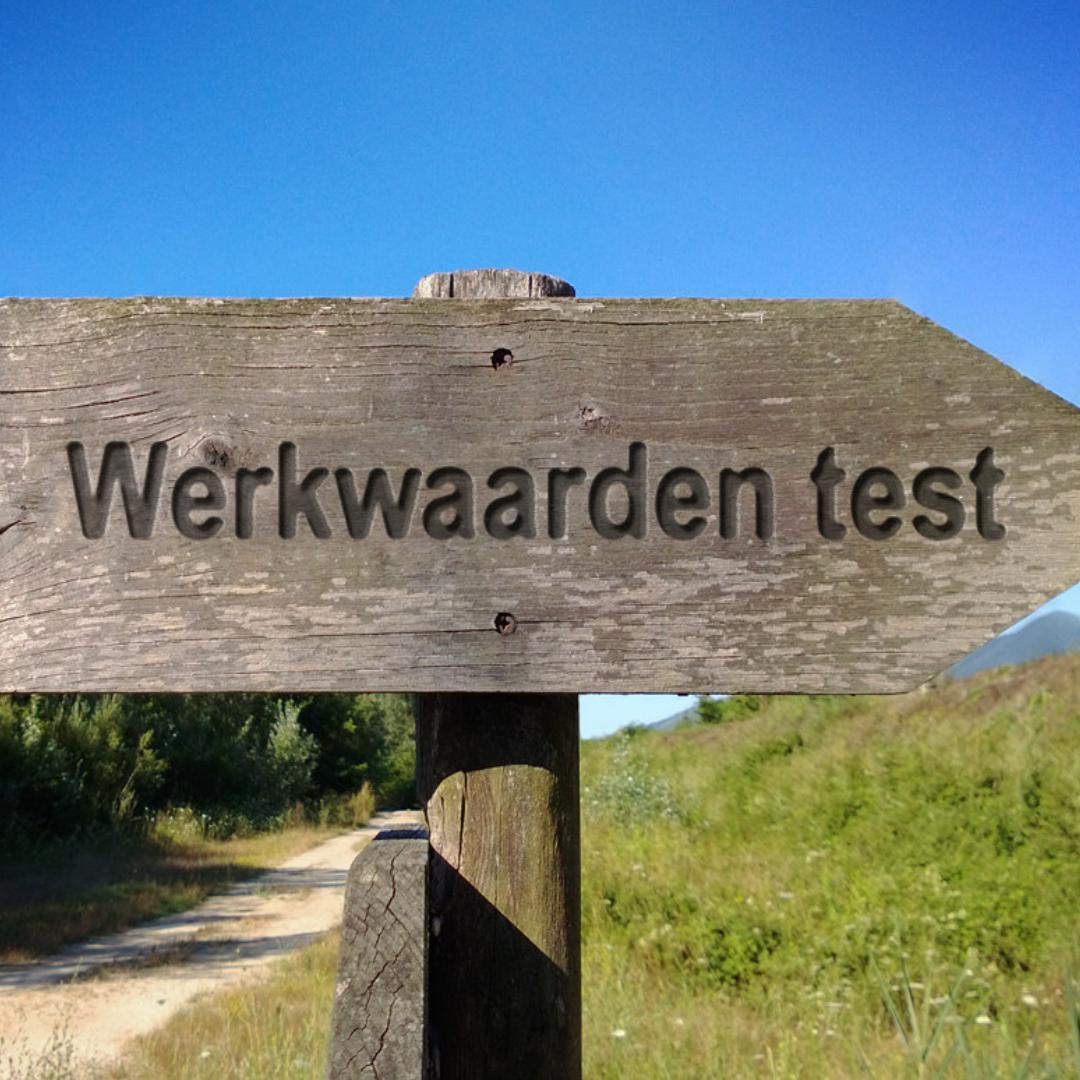 Nederlandse Werkwaardentest