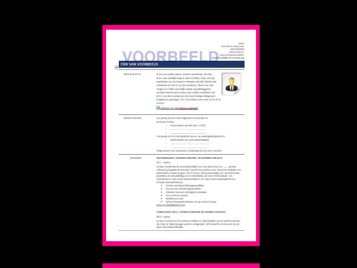 CV template, met voorbeelddata